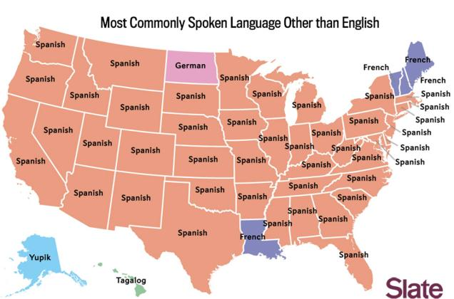 Most Common Languages in U.S.