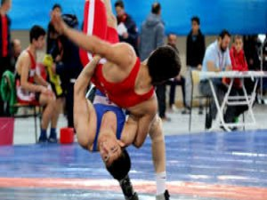 Turkey's Erdin wins silver in world wrestling event