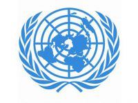 UN adopts resolution of global solidarity on COVID-19