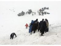 Turkey: Avalanche buries search team, most rescued
